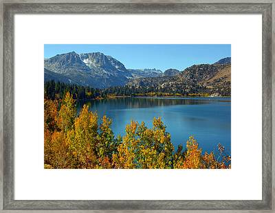 Framed Print featuring the photograph June Lake Blues And Golds by Lynn Bauer