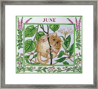June Wc On Paper Framed Print by Catherine Bradbury