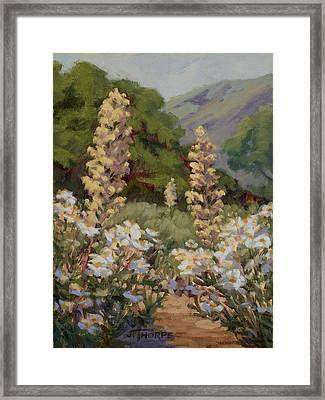 June Whites Framed Print by Jane Thorpe