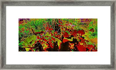 Jungle Abstract Framed Print by Mike Breau