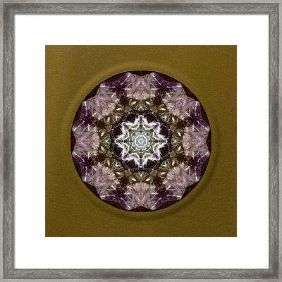 Jungle Eyes Framed Print