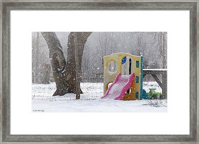 Jungle Gym Out Of Season Framed Print