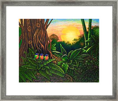 Jungle Harmony IIi Framed Print