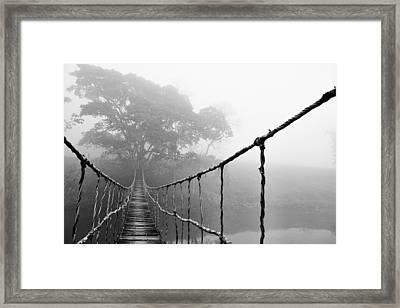 Jungle Journey 5 Framed Print by Skip Nall