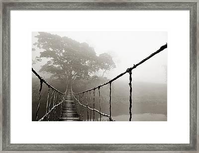 Jungle Journey 6 Framed Print