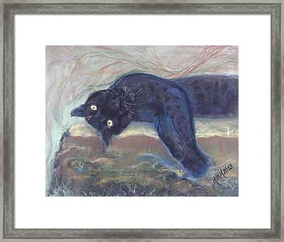 Jungle Kitty  Framed Print