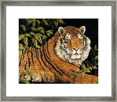 Jungle Monarch Framed Print by Rick Bainbridge