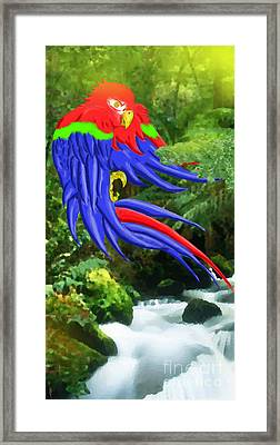Jungle Quaker Framed Print by John Kreiter