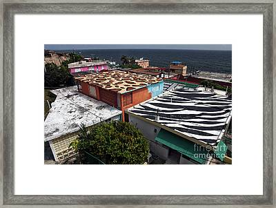 Jungle Roofs Framed Print by John Rizzuto