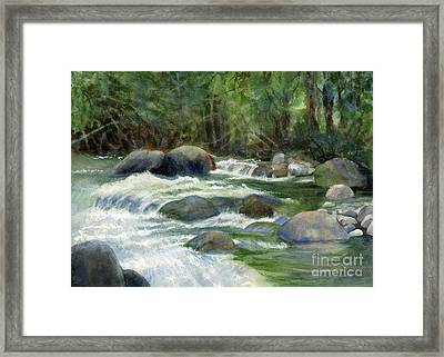 Jungle Stream Framed Print by Sharon Freeman