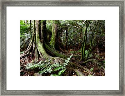 Jungle Trunks3 Framed Print by Les Cunliffe
