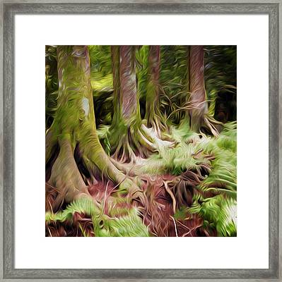 Jungle Trunks4 Framed Print by Les Cunliffe