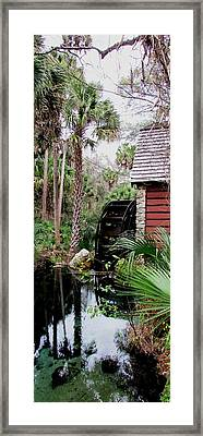 Jungle Water 2 Framed Print by Will Boutin Photos