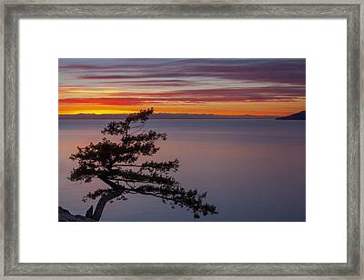 Framed Print featuring the photograph Juniper Point by Jacqui Boonstra