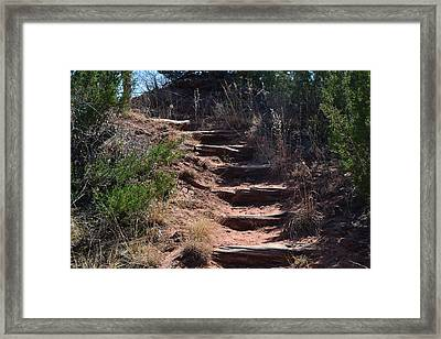 Juniper Ridge Steps Framed Print