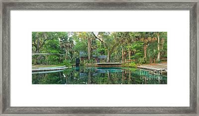 Juniper Springs Panorama Framed Print by Adam Jewell
