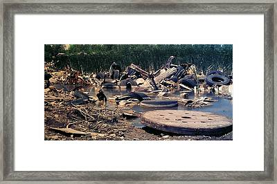 Junk At The Dump Framed Print by Thomas Woolworth