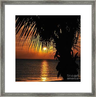 Junkanoo View Framed Print
