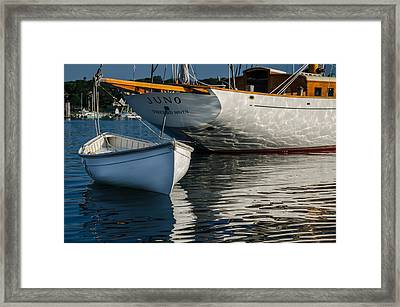 Juno And Dory Framed Print