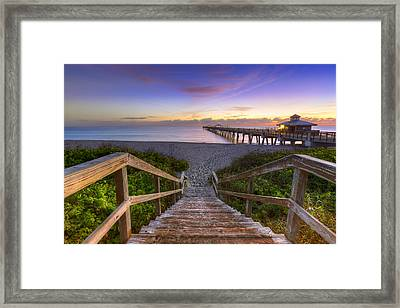 Juno Beach   Framed Print by Debra and Dave Vanderlaan