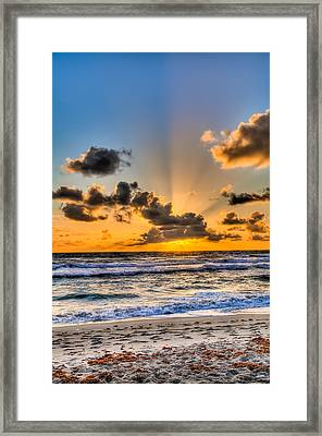 Juno Beach Sunrise Framed Print