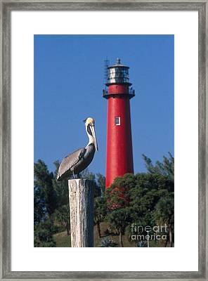 Jupiter Inlet Lighthouse Framed Print by Bruce Roberts