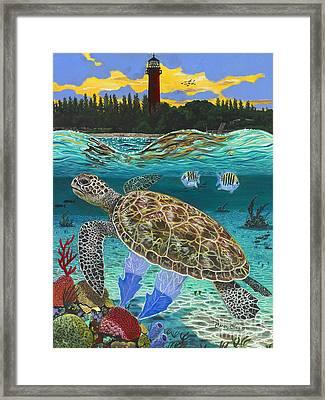 Jupiter Turtle Framed Print