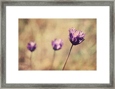 Just A Breath Away Framed Print