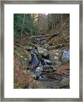 Just A Creek Framed Print by Skip Willits