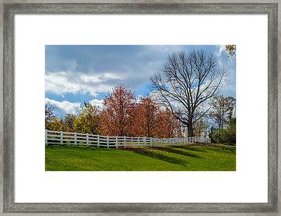 Just A Dream Framed Print