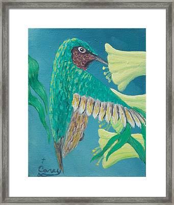 Just A Hummingbird Framed Print by Carey MacDonald