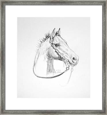Just A Little Wild Framed Print by James Skiles