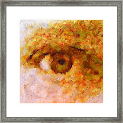 Just A Look Framed Print by RochVanh