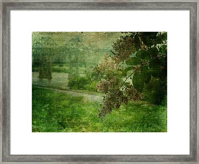 Just A Peek In Green Framed Print by Terry Eve Tanner