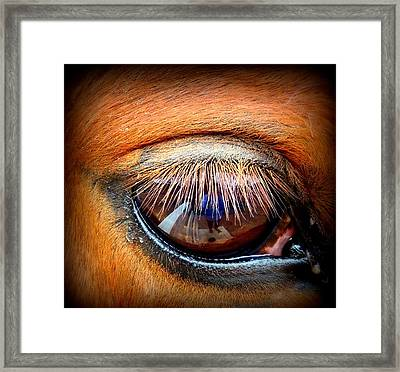 Just A Reflection Framed Print