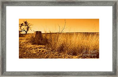 Just A View Framed Print by Mickey Harkins