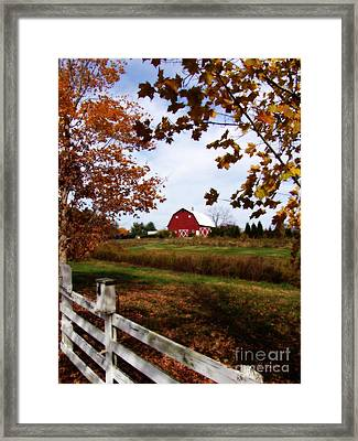 Just Across The Fence Framed Print