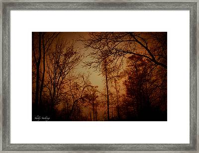Framed Print featuring the photograph Just After Sunset by Shelly Stallings
