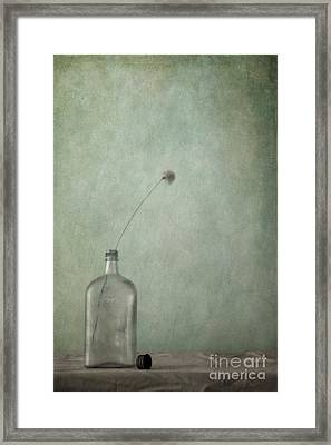 Just An Old Bottle And Its Cap Framed Print