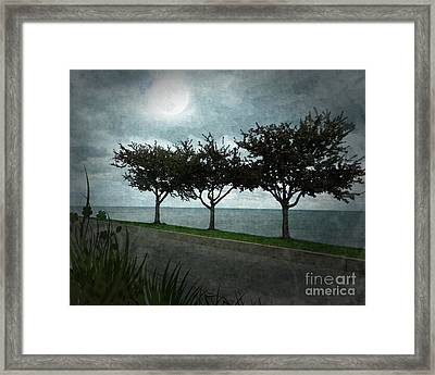 Just Another Gloomy Day Framed Print by Bedros Awak