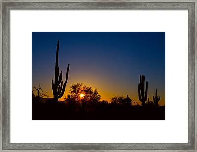 Just Another Sonoran Desert Sunrise Framed Print by James BO  Insogna
