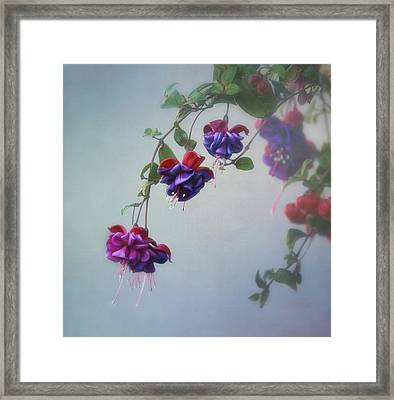 Just Because Framed Print by Kim Hojnacki