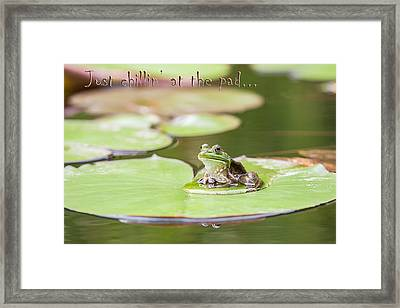 Just Chillin At The Pad Framed Print by Jeff Abrahamson