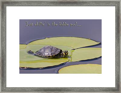 Just Chillin In The Kiddie Pool Framed Print by Jeff Abrahamson