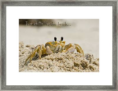 Just Chillin On The Beach Framed Print by Jeff Abrahamson