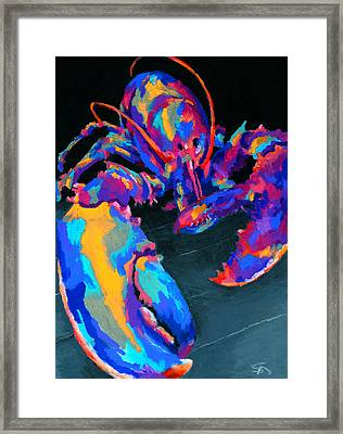 Just Claws Framed Print by Stephen Anderson