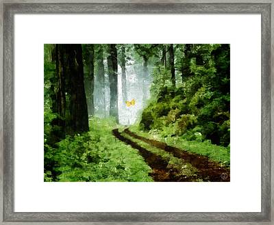 Just Follow Me Framed Print