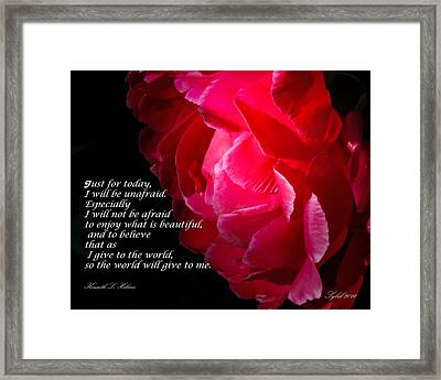 Just For Today Rose Framed Print by Sybil Conley