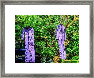 Just Hanging Around Framed Print by MJ Olsen