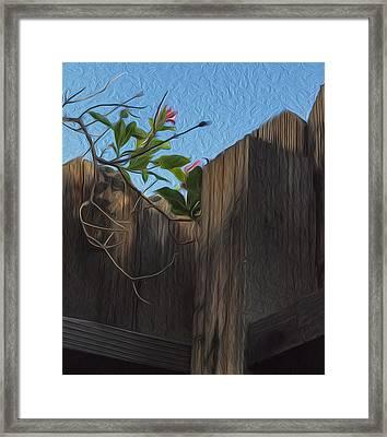 Just Hanging On Framed Print